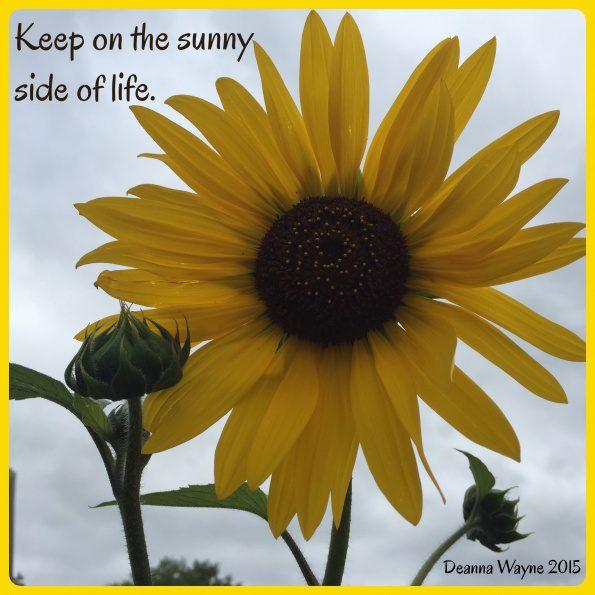 dwd-20150714-Sunny-Side