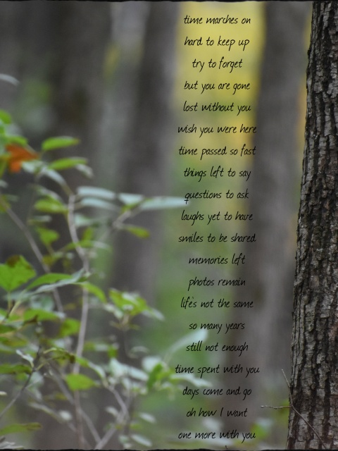 time marches on . . . lost without you . . . creative writing on autumn woods scene photo, mixed blur and focus