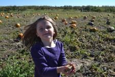 pumpkin-patch-2014-09-508-2